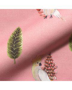 Kaketoe - Pink