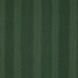 Zeta - Dark green